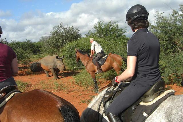 南アフリカ乗馬