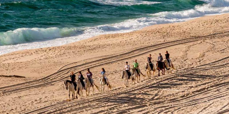 ポルトガル・アレンテージョ乗馬
