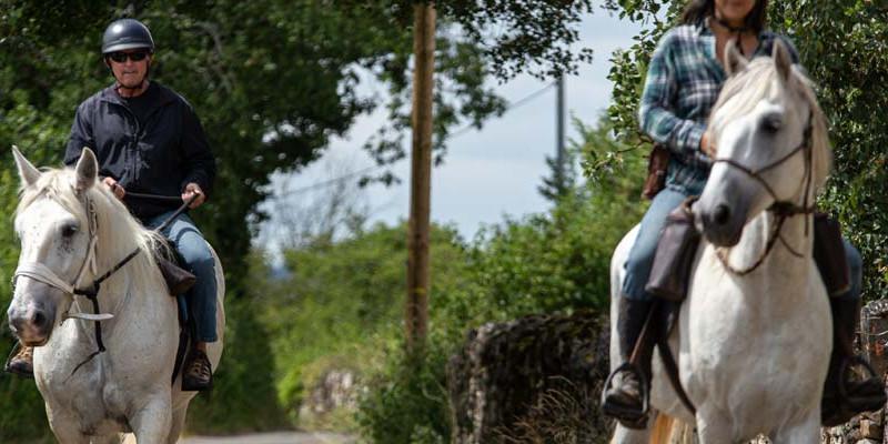 フランス・ロットステイ乗馬